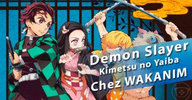 Demon Slayer : Kimetsu no Yaiba… ça va saigner en Avril chez WAKANIM